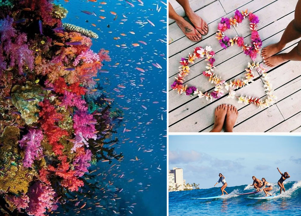 Fiji coral reef, beach feet, party wave