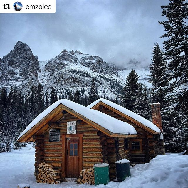 Featured photo @emzolee ・・・ Spent the week exploring the winter wonderland at Lake O'Hara with @zipplesnfend  @whitsos and @joeyrichard87 I couldn't have asked for a more picturesque setting or better company for my first winter backcountry experience ❄️ 🌲  #yegacc #yeg #alpineclubcan #alpineclub #alpineclubofcanada #climbing #rockclimbing #skitouring #hiking #mountains #explorealberta #outdoors #alberta #alpinism #getoutside #scrambling #mountaineering #iceclimbing #mountainlife #mountainadventures