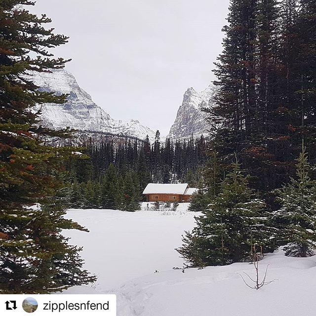 Featured photo @zipplesnfend ・・・ A little getaway midweek with my gf @emzolee and some great new friends @whitsos. Thanks ACC for the wonderful huts and excellent upkeep they do.  #yegacc #yeg #alpineclubcan #alpineclub #alpineclubofcanada #climbing #rockclimbing #skitouring #hiking #mountains #explorealberta #outdoors #alberta #alpinism #getoutside #scrambling #mountaineering #iceclimbing #mountainlife #mountainadventures