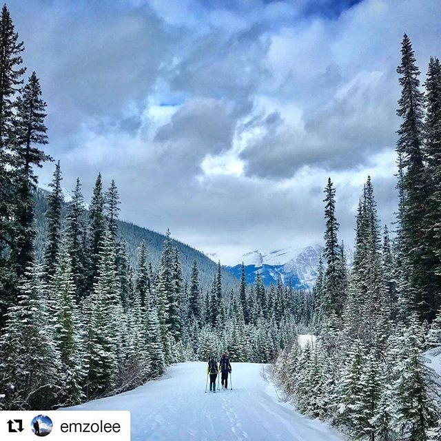 Featured photo @emzolee ・・・ Not all who wander are lost 🌎🌍🌏 #yegacc #yeg #alpineclubcan #alpineclub #alpineclubofcanada #climbing #rockclimbing #skitouring #hiking #mountains #explorealberta #outdoors #alberta #alpinism #getoutside #scrambling #mountaineering #iceclimbing #mountainlife #mountainadventures