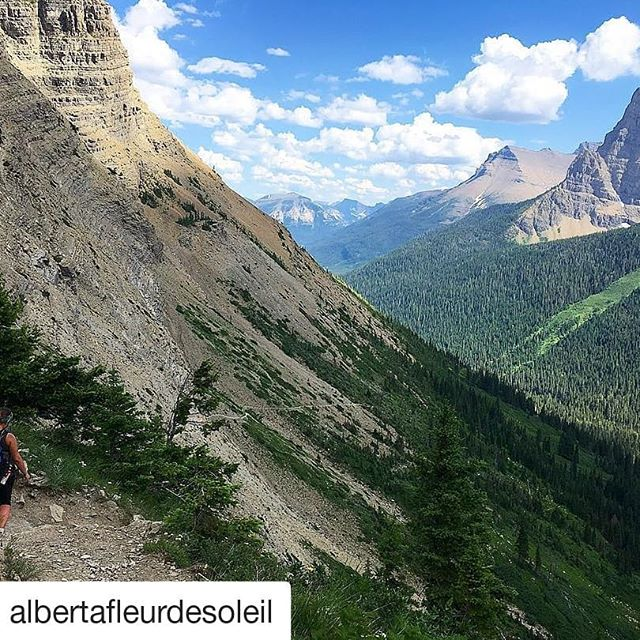 #Repost @albertafleurdesoleil (@get_repost) ・・・ Great goat lake views. #goatlake #waterton #watertonlakesnationalpark  #mountains #mountainpeopleunite #girlswhohike #hike #scrambling #exploretheoutdoors #explorethemountains #getoutside #hiking #yegacc #hikingbabes #mountainbabes #exploretherockies #travelalberta #canada #canadianrockies #hikelife #mountainlife #views#hikevibes #nature #alpineclubofcanada#summer #summervibes