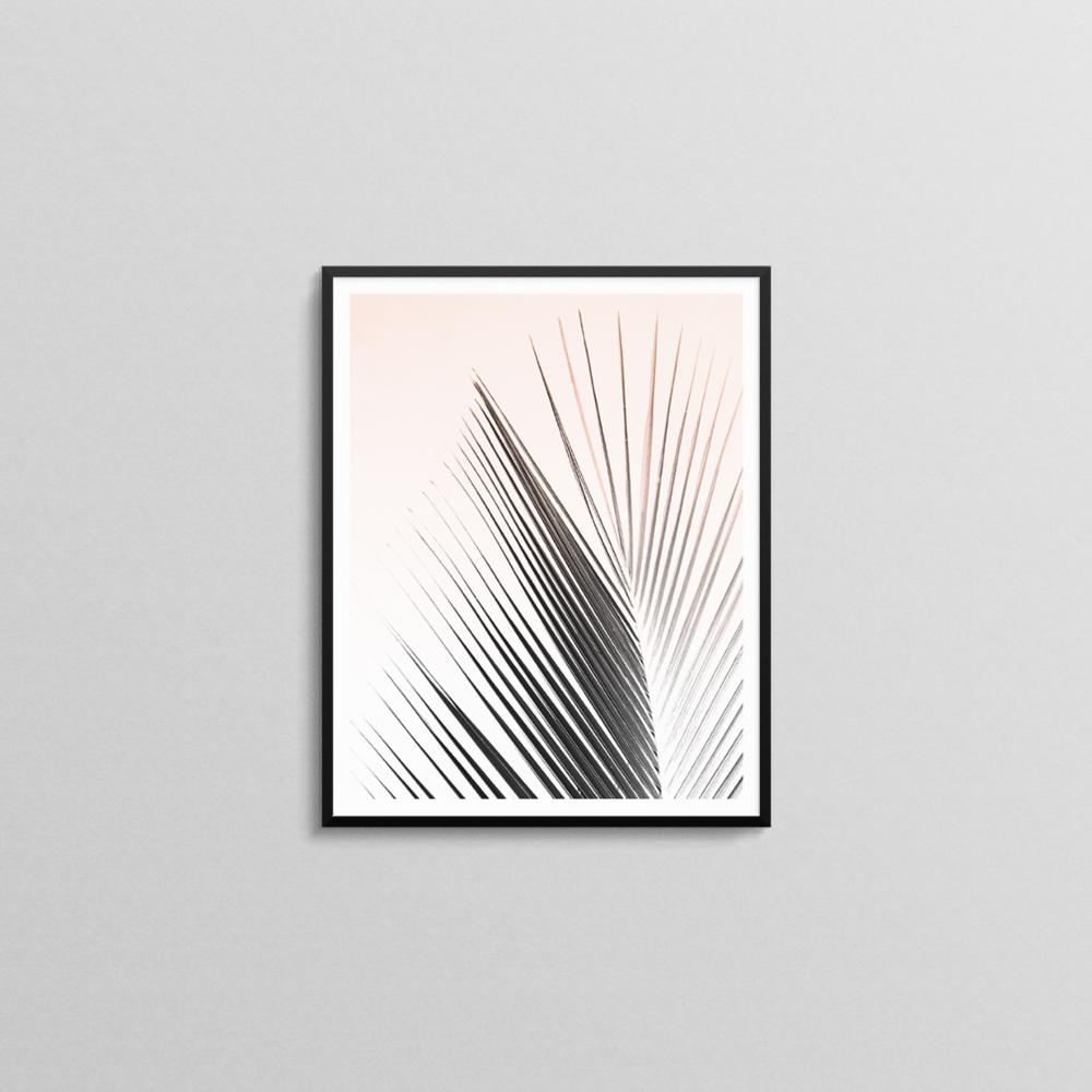 Palm Leaf Print.png