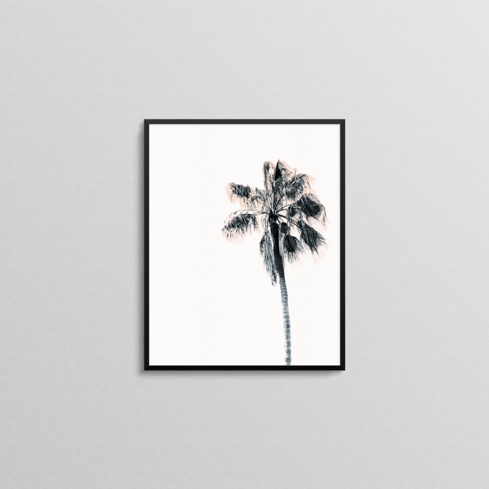 Palm Tree Print 1.png