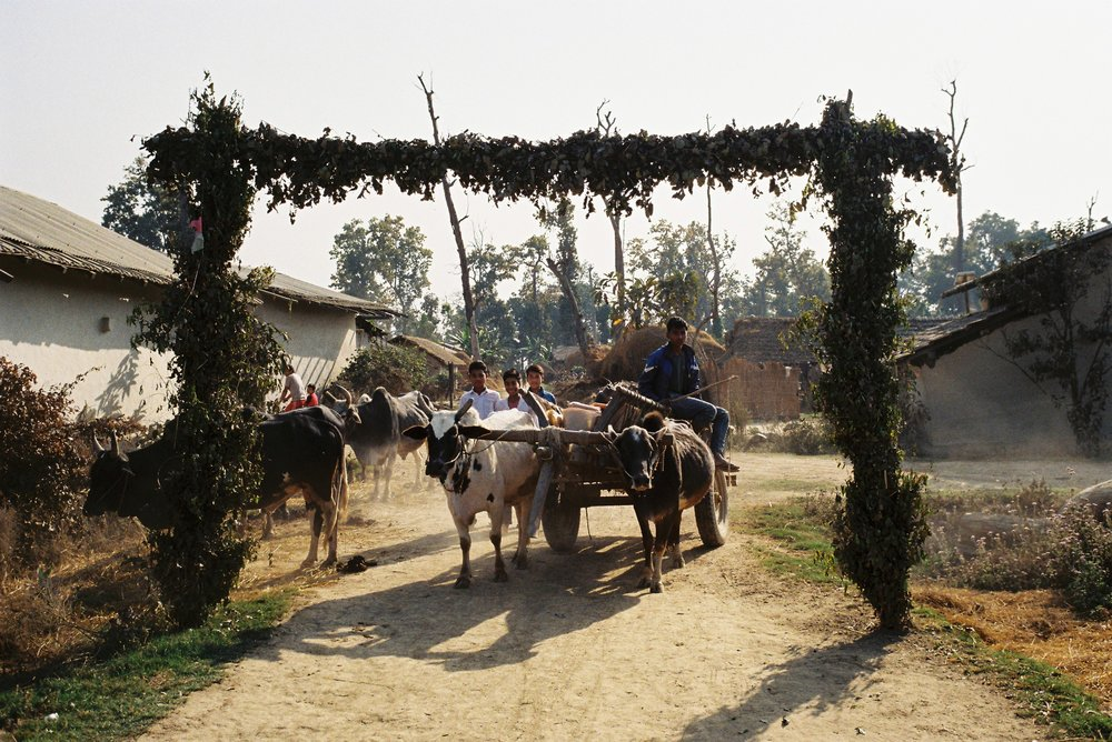 nepal film 16221.JPG