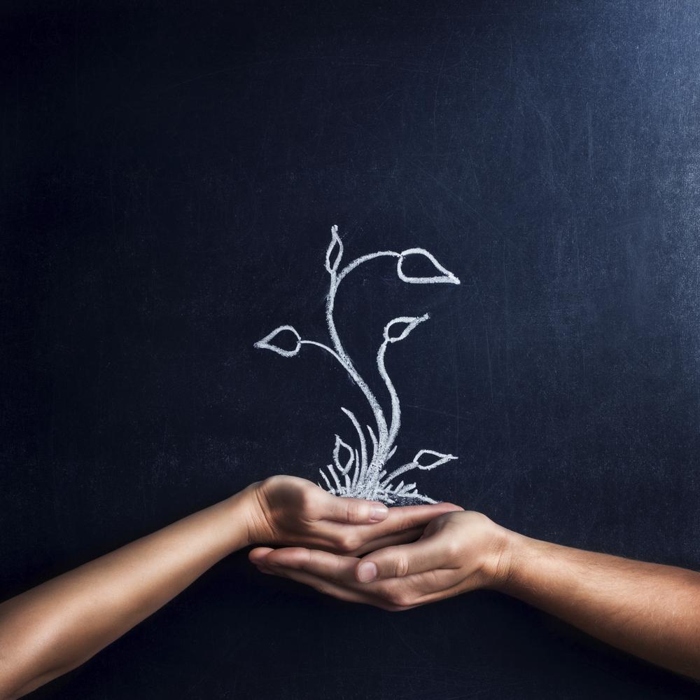 Mentoring Myopia: Mentorship in the 21st Century