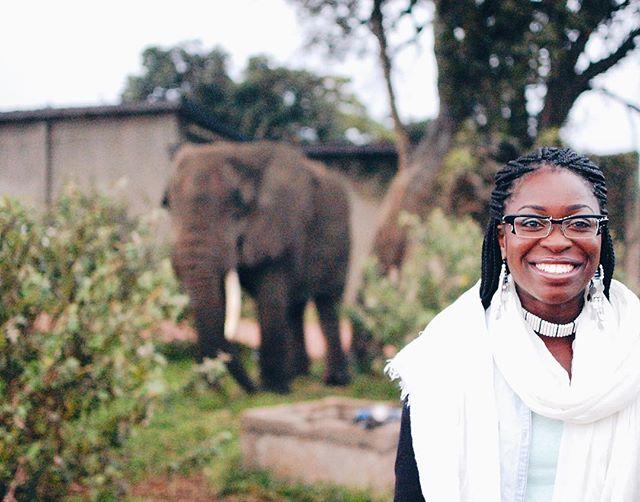🐘✨ ••••••••••••••••••••••••••••••••••••••• #oboralux #traveladventurewithoboralux #africa #tanzania #smile