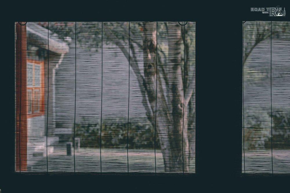 through-the-blinds.jpg