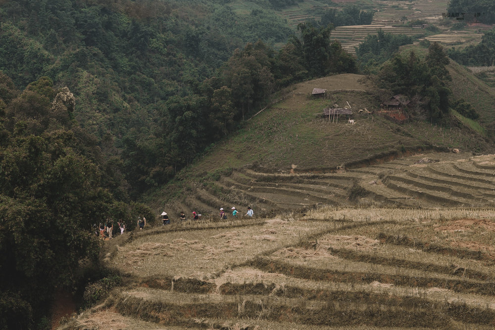 LET'S WANDER WHERE WIFI IS WEAK | SAPA, VIETNAM >> -