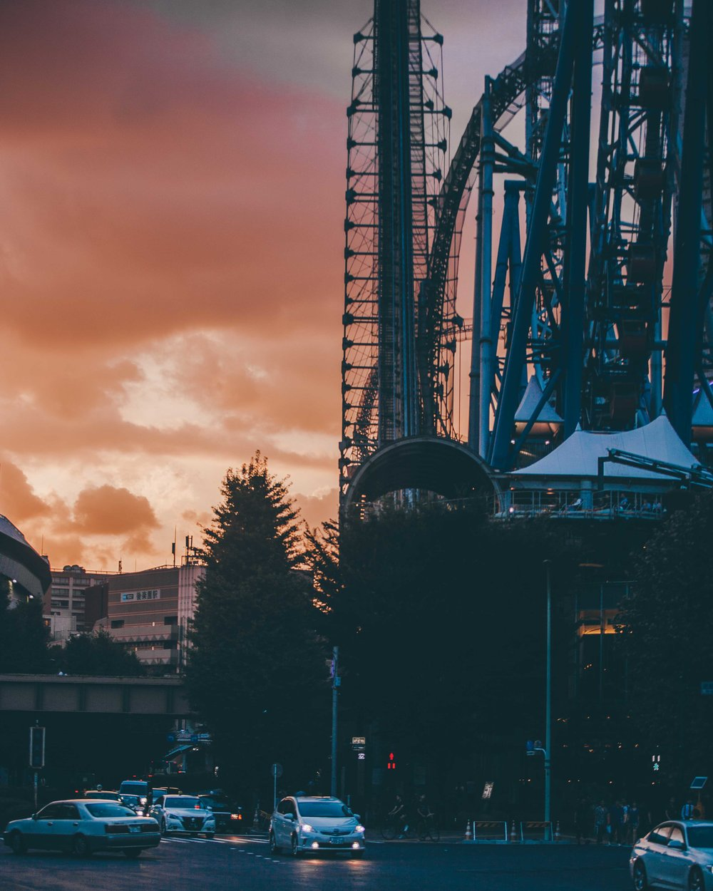 Tokyo Sunset Moments-3610-2.jpg