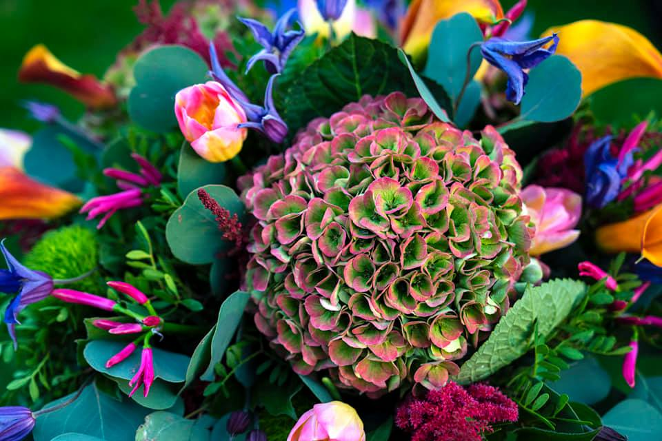 Flitwick florist SA Floristry