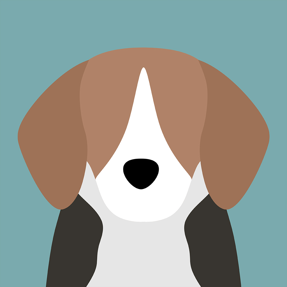 THUMBNAILS_ANIMAL_A_DAY.jpg