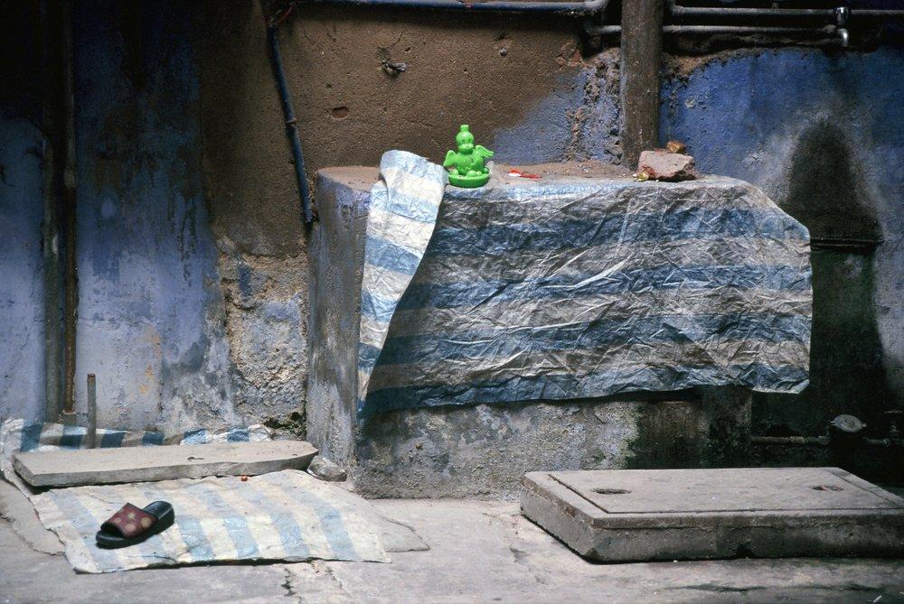 Delhi-green duck.jpg