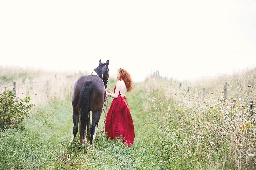 003_01_2013_0826_windswept_horse_079f.jpg