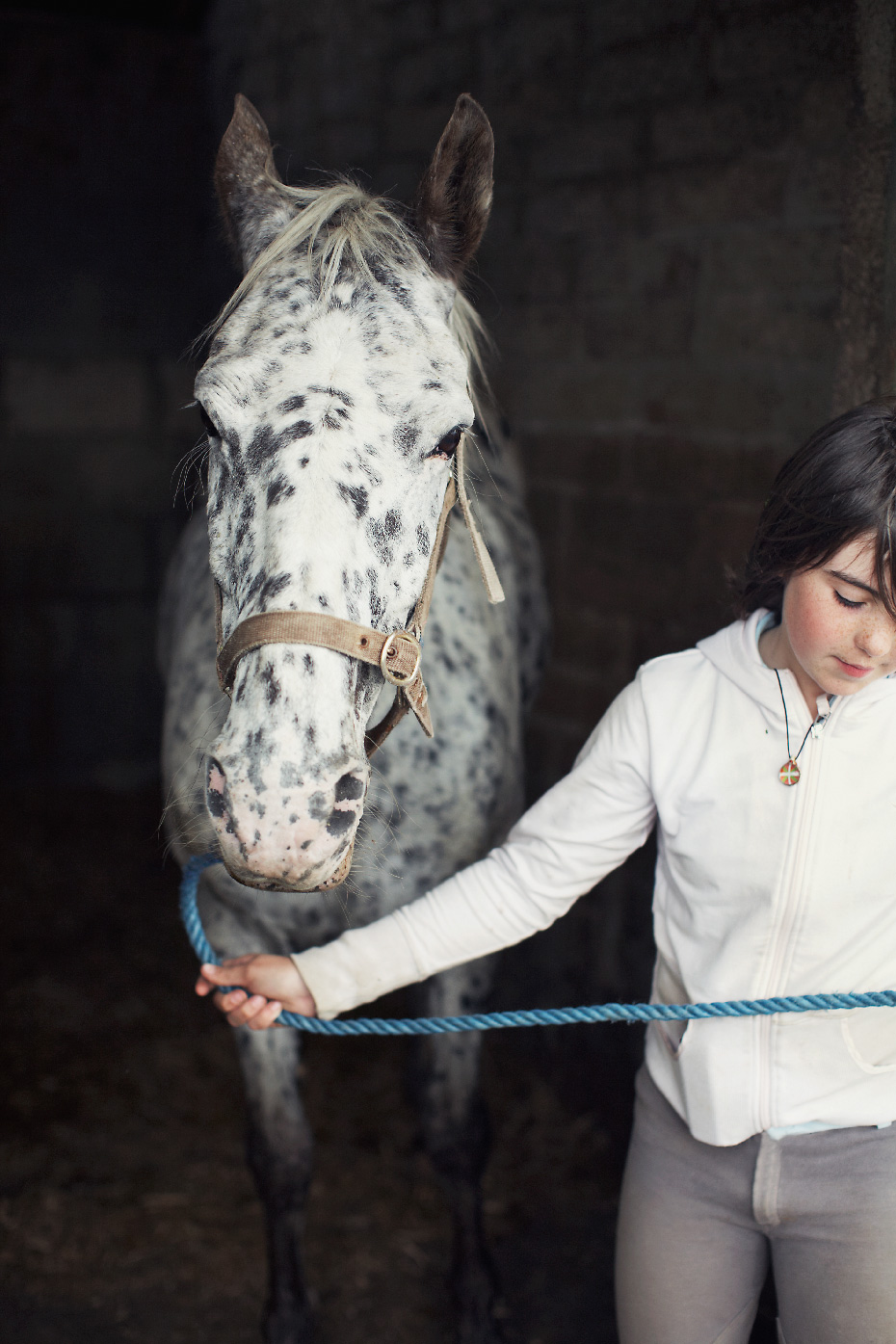 Stacey Van Berkel Photography I Girl with leopard appaloosa pony at Donegal Equestrian Centre I Donegal, Ireland