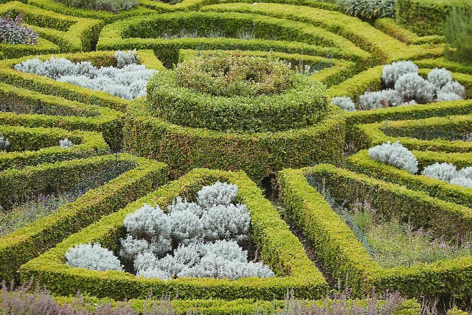 Stacey Van Berkel Photography I Beautiful boxwood hedge maze I Bodyskallen Hall & Spa I Wales