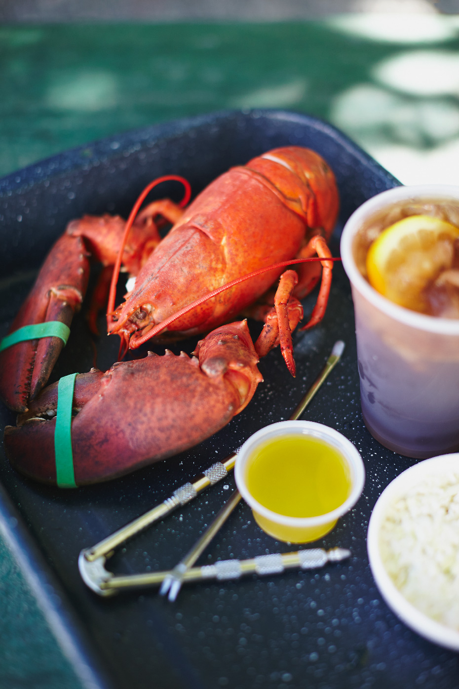 Stacey Van Berkel Photography I Rustic lobster al fresco with butter, coleslaw & ice tea I Maine
