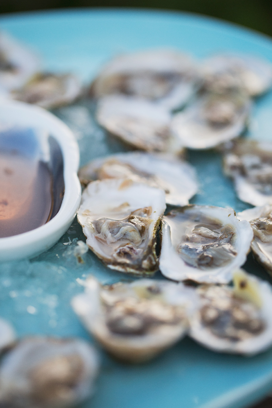 Stacey Van Berkel Photography I Fresh shucked oysters on turquoise plate I Newport, Rhode Island