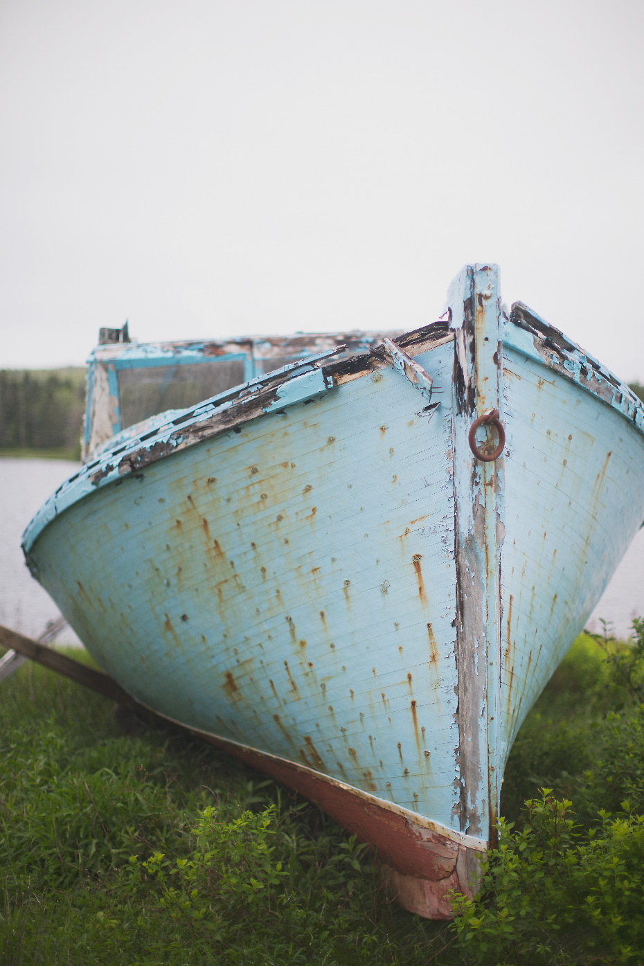 Stacey Van Berkel Photography I Old abandoned turquoise fishing boat I Nova Scotia, Canada