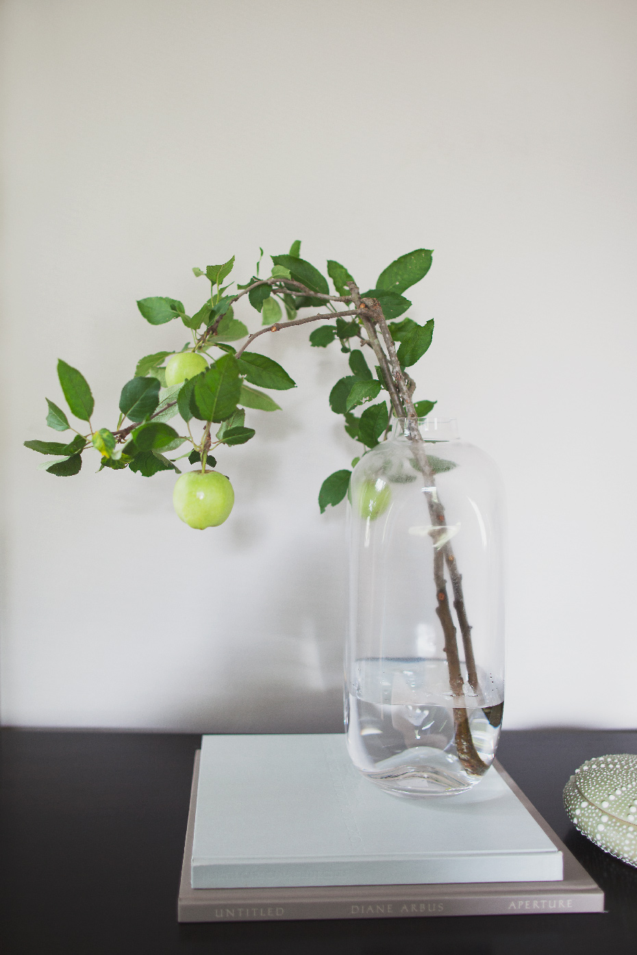 Stacey Van Berkel Photography I Still life of branch with green apples I Bernhardt Furniture