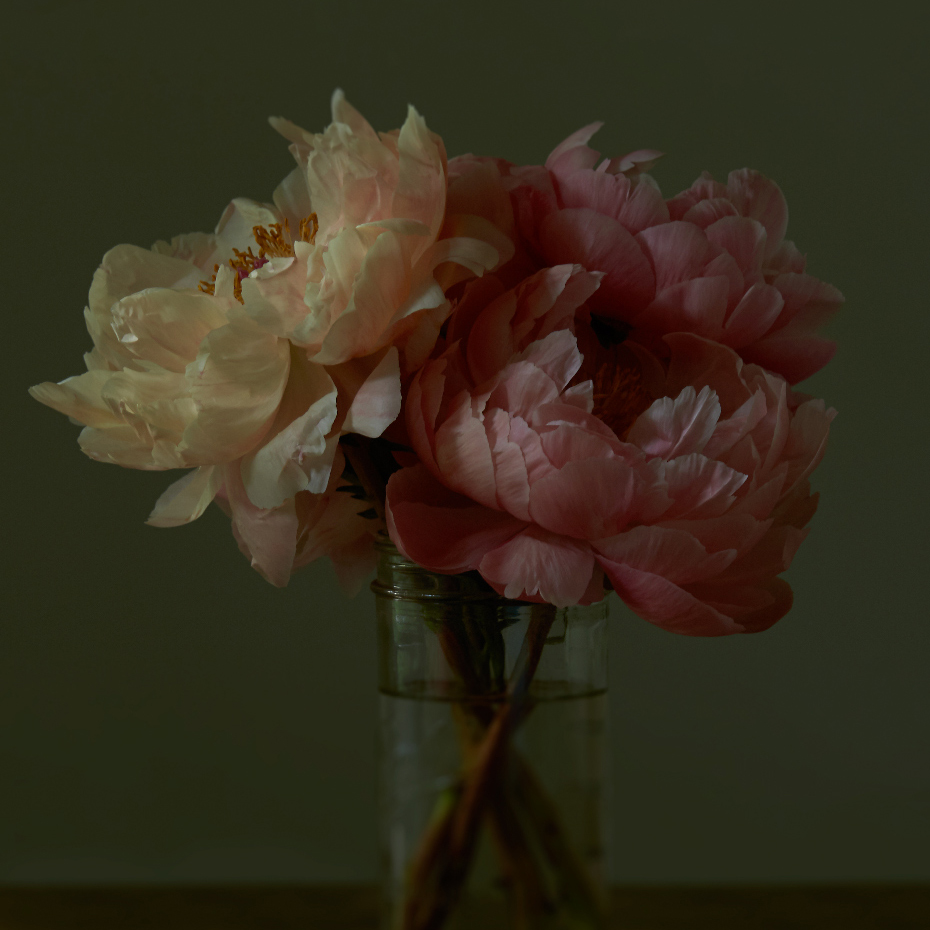 PEONIES I limited edition