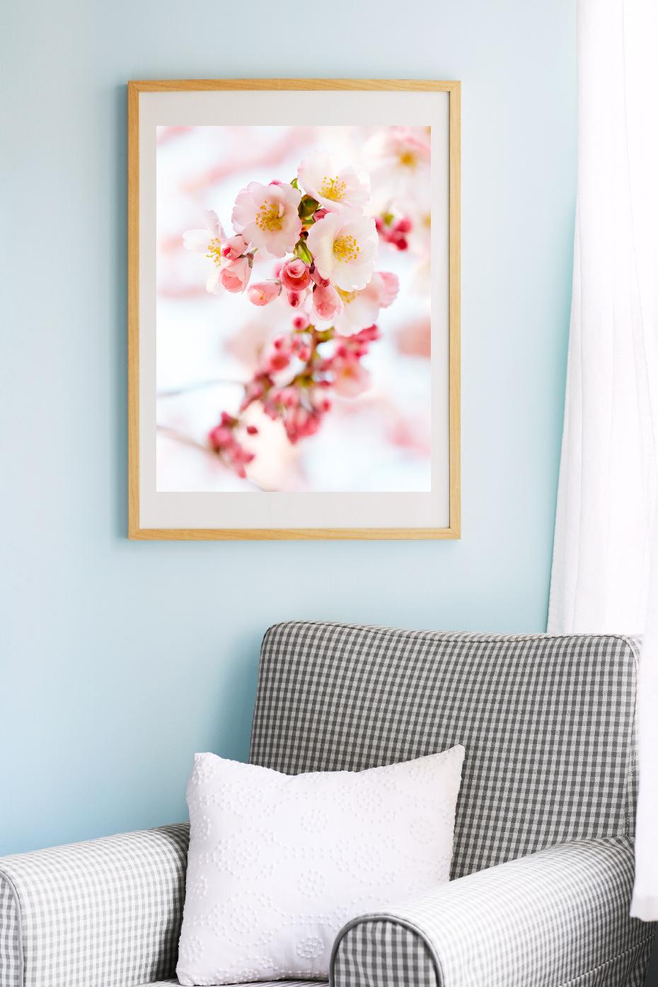 1_blossoms_II.jpg