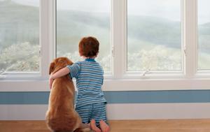 renewal-by-andersen-buy-1-window-get-1-window-40-off-large-2.jpg