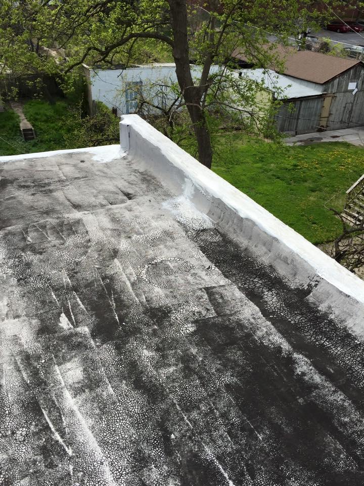 roof20.jpg