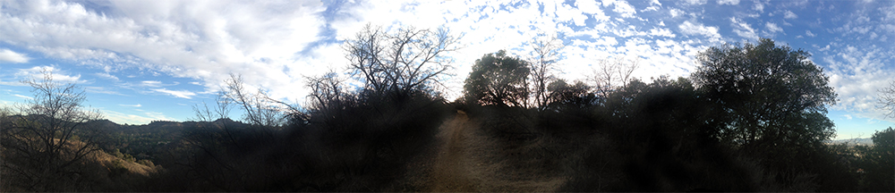Fryman Canyon trail, Los Angeles.
