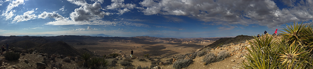 View from Ryan Mountain, Joshua Tree National Monument, California.