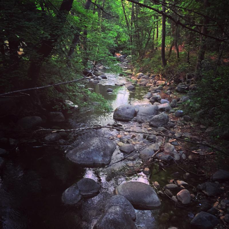Lithia Creek in Lithia Park, Ashland, Oregon.