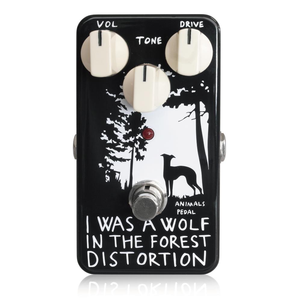 iwaswolfintheforestdistortion-001.jpg