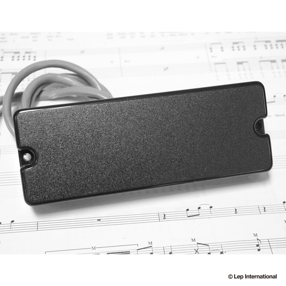 21080511-Bass-Soapbar-Humbacker-5弦.jpg