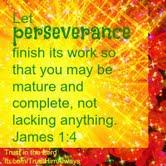 perservere