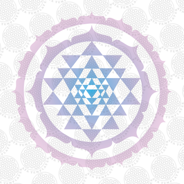 Logo251-small.jpg