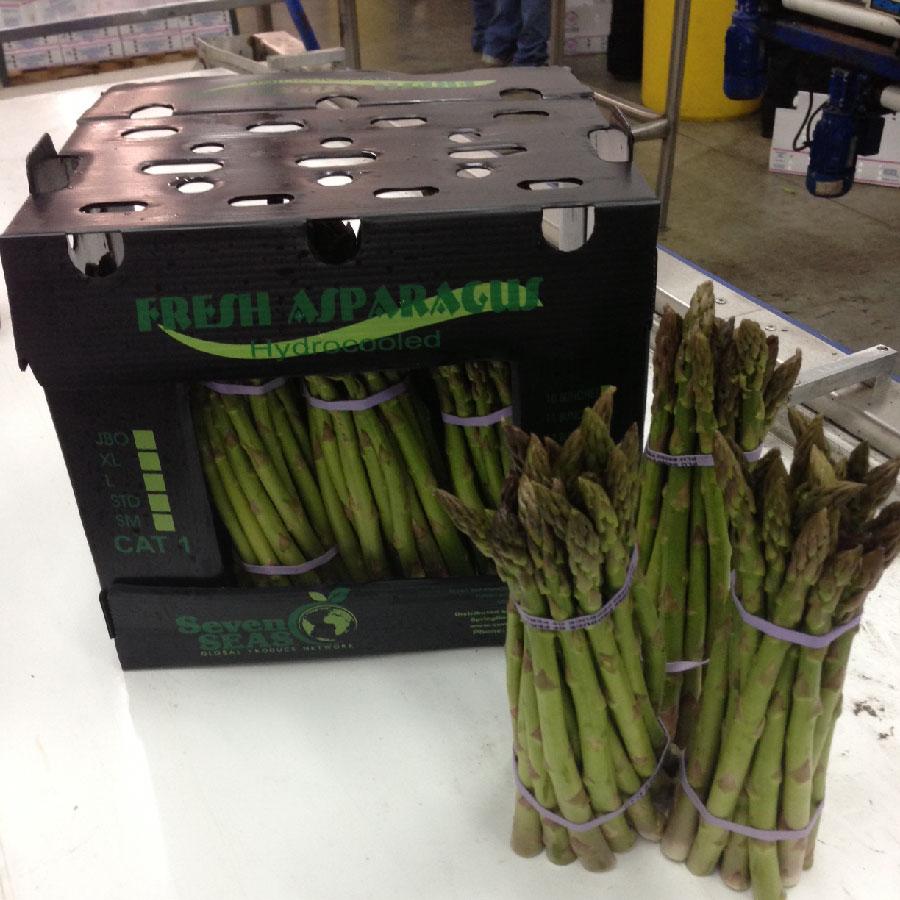 Asparagus Box-01.jpg