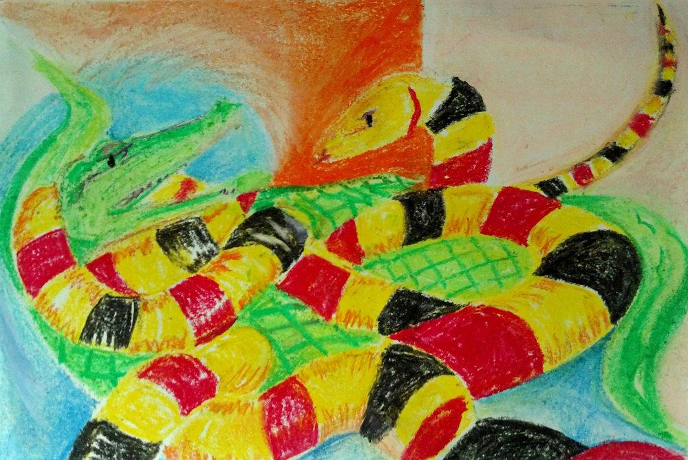 snake v alligator1.jpg