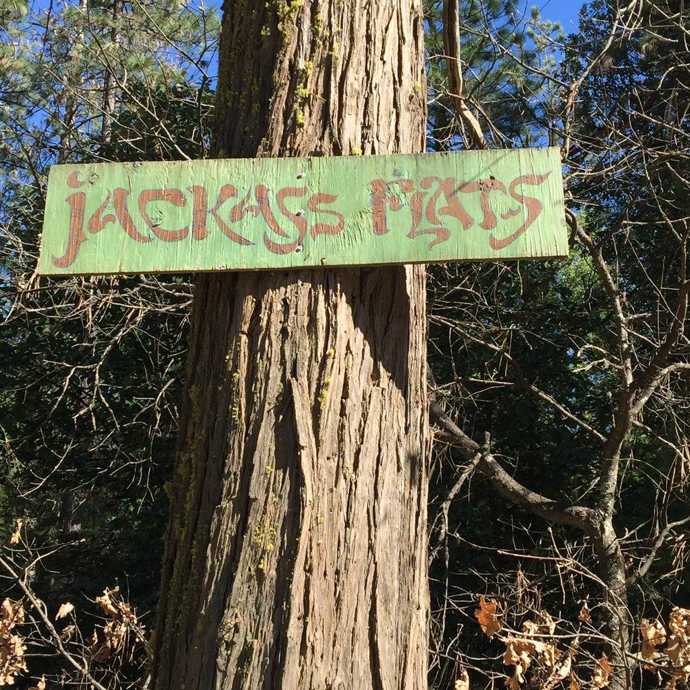 Jackass_Flats.JPG