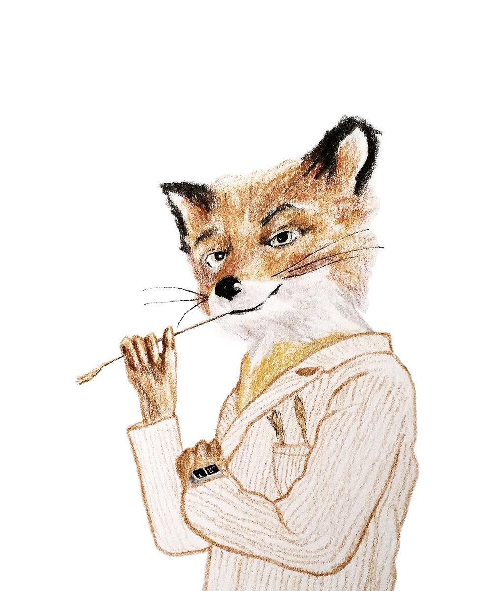 Fantastic Mr Fox (2017)