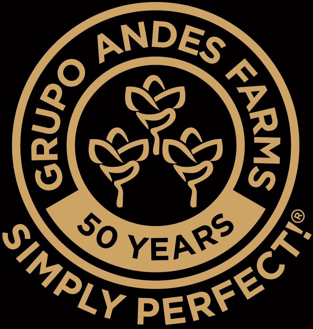 Grupo Andes