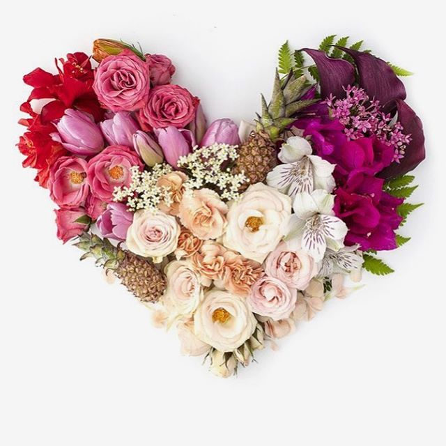 Have a beautiful day filled with love today and always 💕💕💕 beautiful image by @shaycochrane