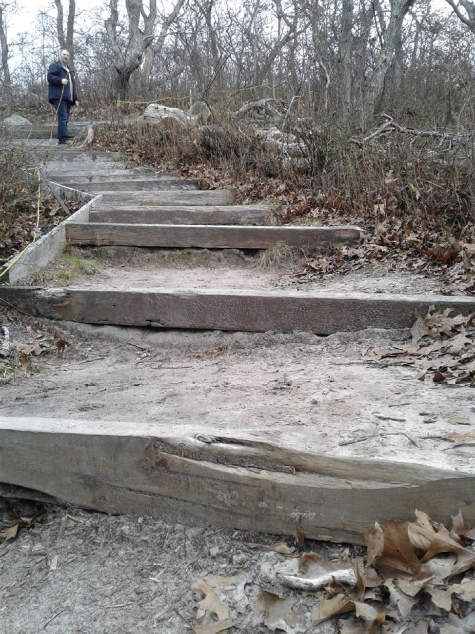 One of the many sets of stairs on this trail - at the top, my husband Matt