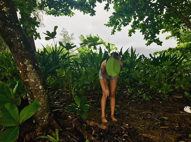 WELCOME TO THE JUNGLE 🌿🌿 Found some beautiful kukui nuts where the roots meet the sea today... with leaf in hair of course! I am so exited to wire wrap these beauties into some SERIOUS statement pieces! I'll post my finds tomorrow✨Stay tuned babes 🌰🌿✌🏽 . . . . . #rootssea #rootsseababes #adventure #lifestyle #islandgirls #hawaii #treasurehunting #bikini #bikinibabe #wanderlust #kauai #beachcombing #jewelrydesigner #mermaidlife #mermaids #legsfordays #jungle #supportlocal #shopsmall #paradise #beachbabes #beachin #beachwear #lifestyleblogger #loveyourskin #makersgonnamake #artist #locallove #bosslady #aloha