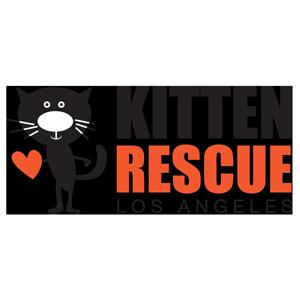 Kitten Rescue Los Angeles