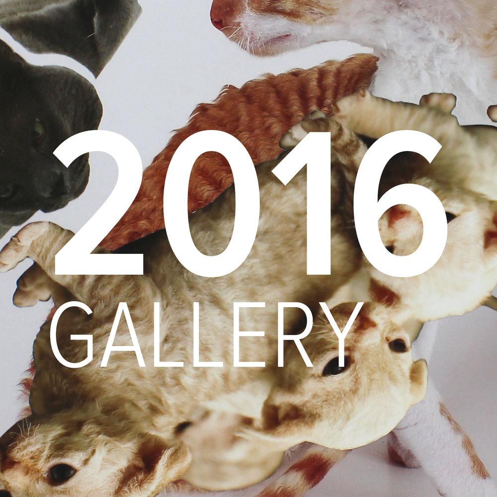 Gallery-2016.jpg