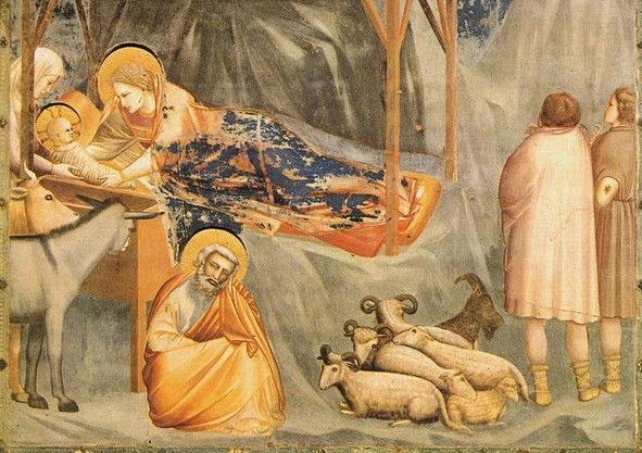 Birth of Christ - Giotto