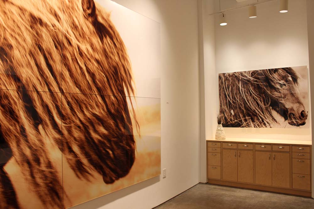 Brenda Stumpf at Bill Lowe Gallery 71.jpg
