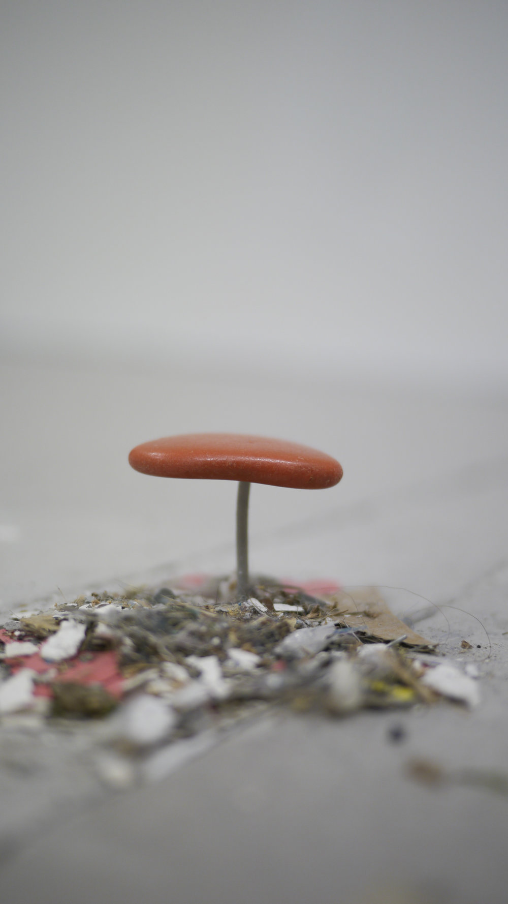 Ally McGinn (2017)  Studio Mushroom.  [Working Title]. Studio detritus. Size varies, approximately 5 x 5 x 2 cm.   This piece is more about the perceptual association of a mushroom than a pre-conceived idea or inspiration from nature.