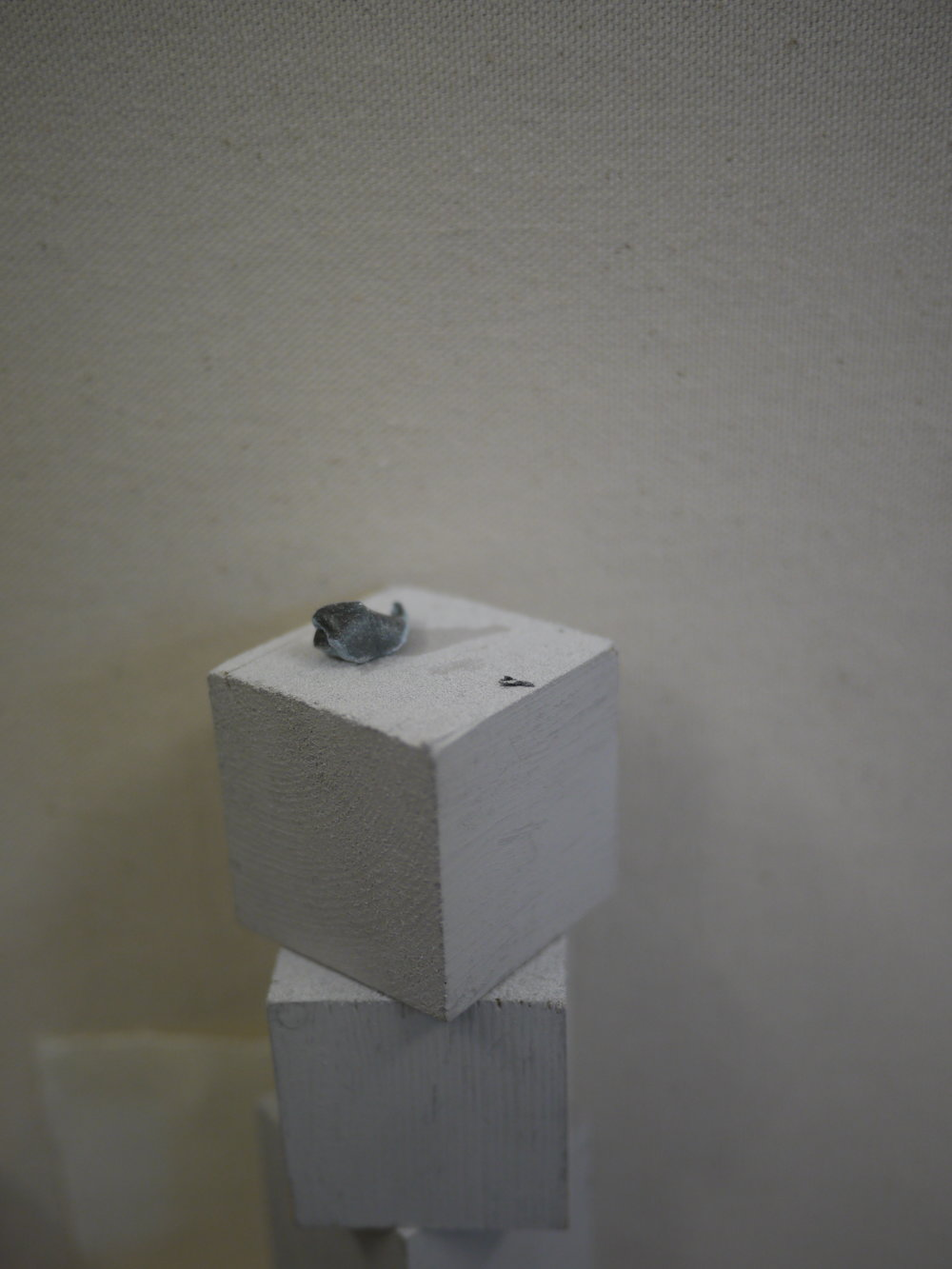 P1330609.JPG