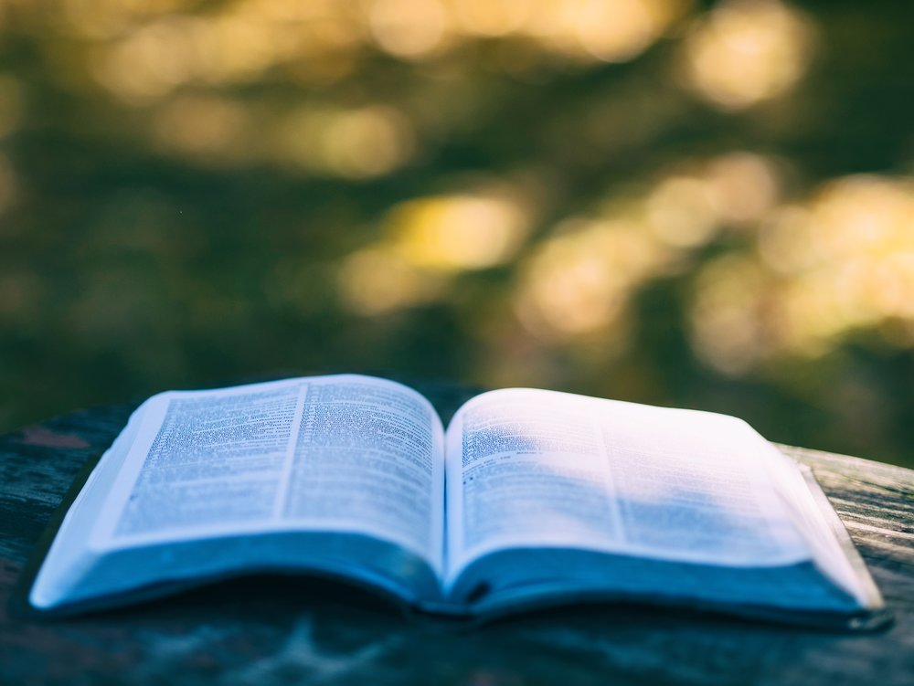 Bibledistribution -
