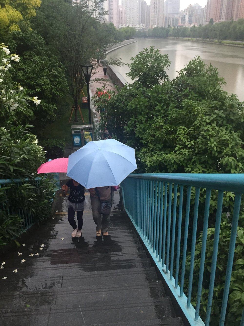 Rainy walk after work.